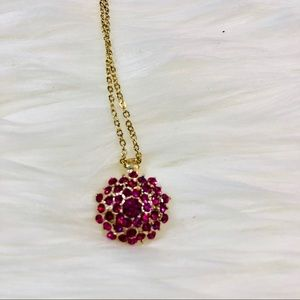 WHBM Pink Burst Necklace